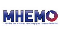 """Résultat de recherche d'images pour """"mhemo"""""""